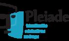 pleiades-350-e1585275082508